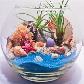 Free Kids DIY Class: Make-Your-Own Seaside Terrarium