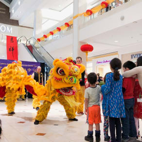 Celebrate Chinese New Year with CCACC