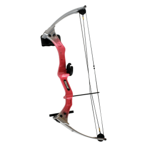 Bear Archery Brave 3 Bow Set