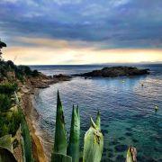 Spain roses sunset
