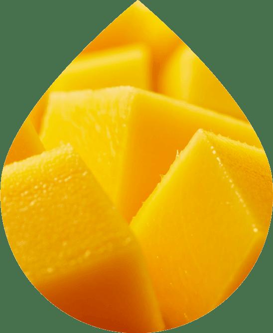 Mango Wonder